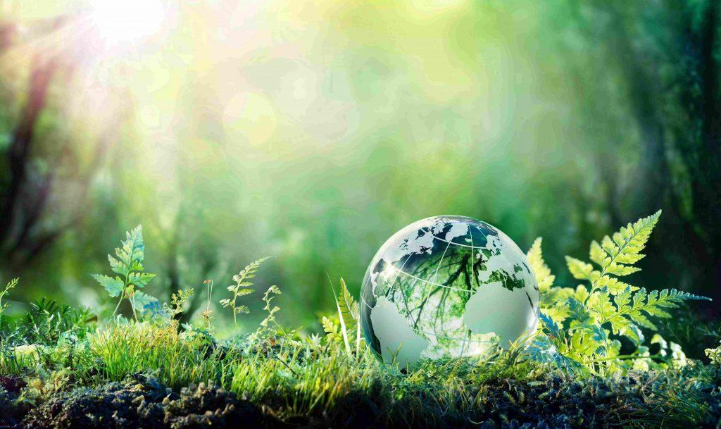 FMCG Gurus - Sustainability