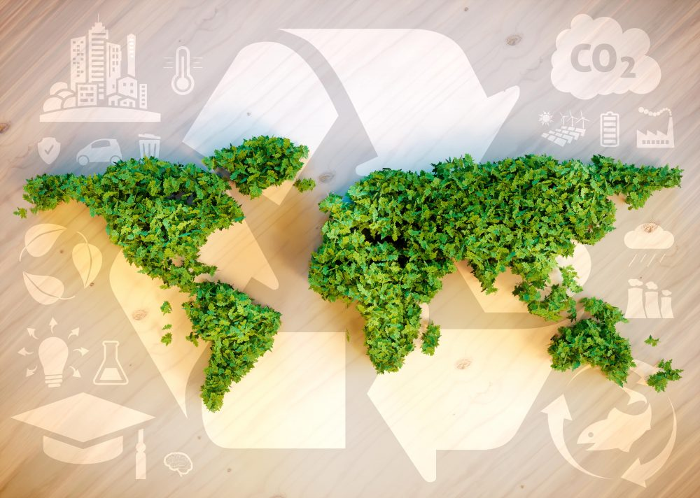 Sustainability – Consumer Group Trends Reports.